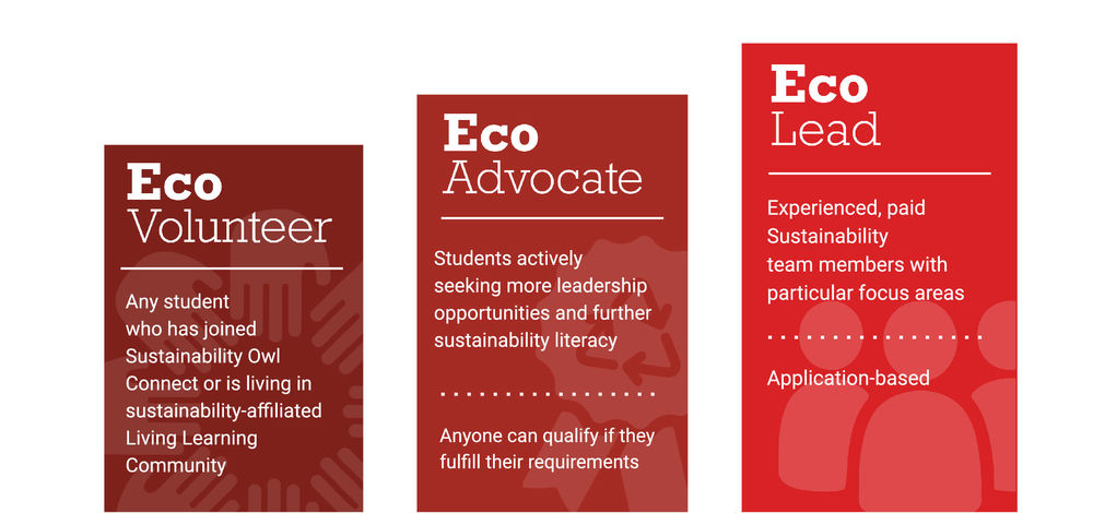 Visual representation of the three levels of involvement - EcoVolunteer, EcoAdvocate, EcoLead